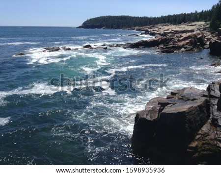 rocky tree lined shoreline with waves