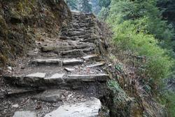 Rocky trekking trail steps to Tadapani ,Annapurna Himalayan range-Nepal