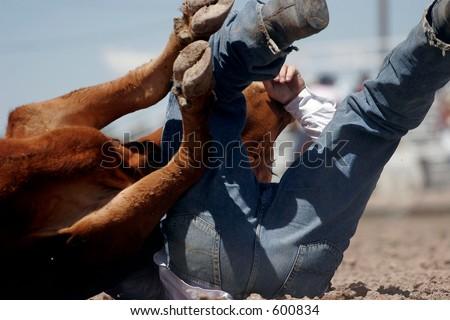 Rodeo cowboy steer wrestler