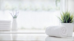 Roll of clean bath towel and houseplant on white table, copy space.