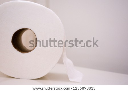 Roll of soft white toilet paper resting on it's side on top of a white toilet lid. Ample copy space.