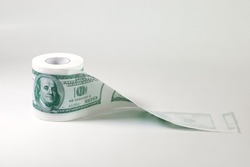 Roll of toilet paper in form of dollars, concept of deficit and inflation, on light background with copy space