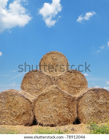 Rolled straw after harvesting in  field with blue sky and clouds #78912046