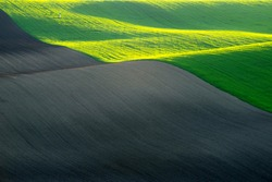 Rolling field, divided strips of clay, alternating brown clay and green crops. All in the evening sun. No sky.