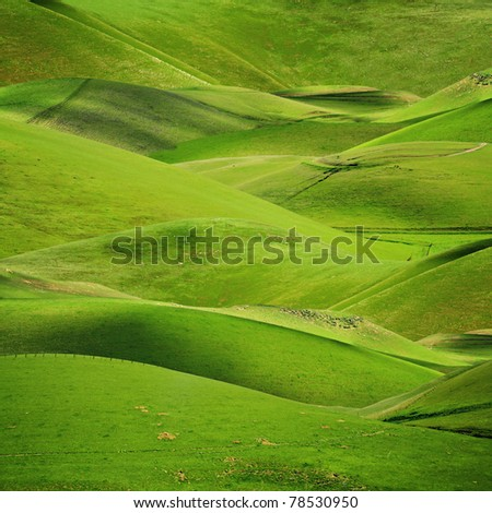 Rolling green hills in spring or summer nature background