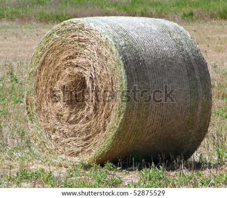Rolling haystack.
