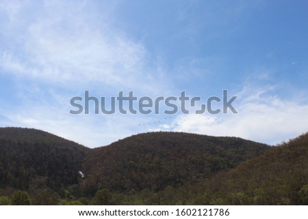 rolling hills against a blue sky with wispy clouds. Waterfall gully on the left and a flock of birds over the middle hill.