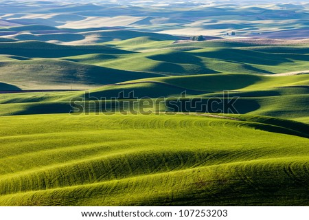 Rolling Hills and Fields