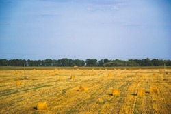 Rolls with hay laying on the field. Blue sky and yellow field, as Ukraine flag colors. Harvested straw field with round dry hay bales in front of mountain range. Cut and rolled hay bales lay.