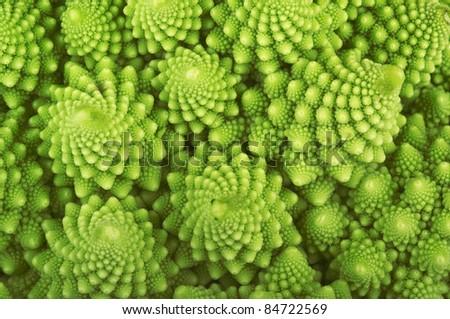 Roman broccoli isolated on white