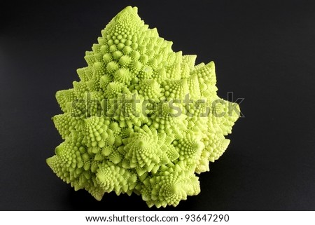 roman cauliflower on dark background