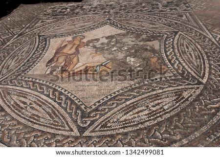 Roman Mosaics of Bacchus encountering Ariadne, House of the Ephebe. Volubilis Archaeological Site, Morocco. #1342499081