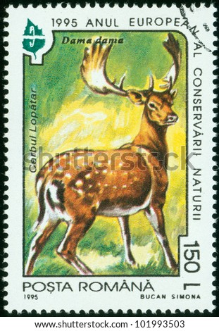 ROMANA - CIRCA 1995: A stamp printed by ROMANA shows a deer in the forest circa 1995.