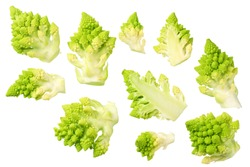 Romanesco broccoli isolated on white background. Roman cauliflower. top view