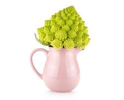 Romanesco cauliflower or broccoli in a pink jar isolated on white background one green head