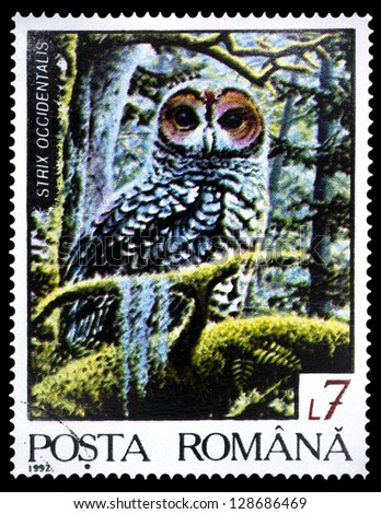"""ROMANIA - CIRCA 1992: A stamp printed in Romania shows Spotted owl (Strix occidentalis), with the same inscription, from the series """"Fauna of the Northern Region"""", circa 1992"""