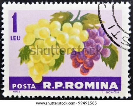 ROMANIA -CIRCA 1963: A stamp printed in Romania shows the grapes hangs on a branch, circa 1963.