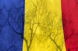 Romanian Flag. Shadows of some trees on the flag's color.