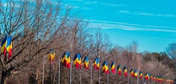 Romanian flags hoisted on poles on the main street of the city.  The flag of Romania on the mast.  December 1, Romania's National Day. Great Union Day. In the background the blue sky and trees