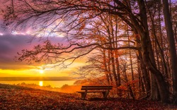 Romantic autumn mood at sunset at lake Ammersee in Bavaria. An empty park bench at the edge of the forest with view to the lake.