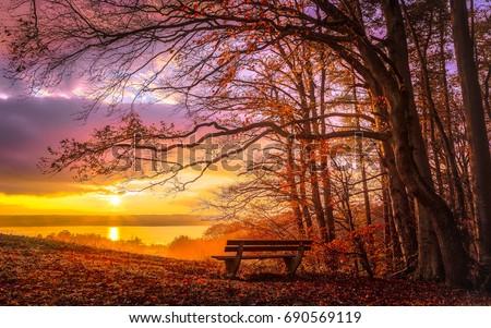 romantic autumn mood at sunset...