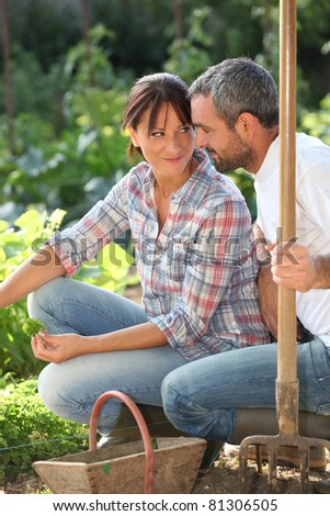 Romantic couple in an allotment