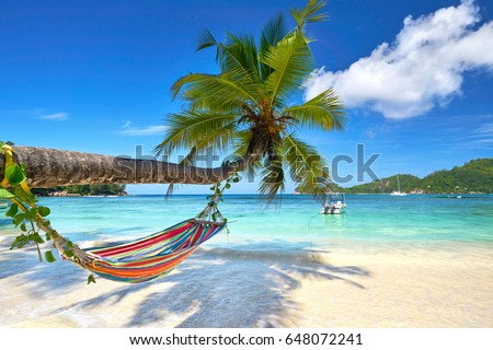 Romantic cozy hammock in the shadow of coconut palm tree at tropical paradise ocean beach in bright sunny summer day - vacation background                                 #648072241