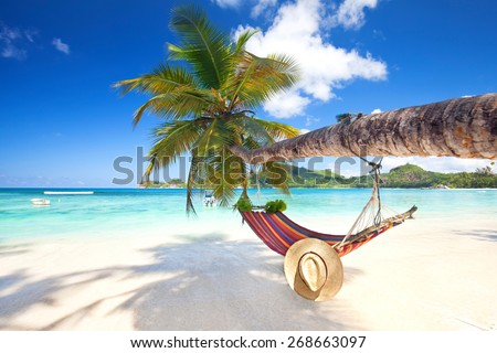 Romantic cozy hammock in the shadow of the palm on the tropical beach by the sea
