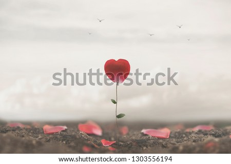 romantic flower made to heart symbol of love and freedom #1303556194
