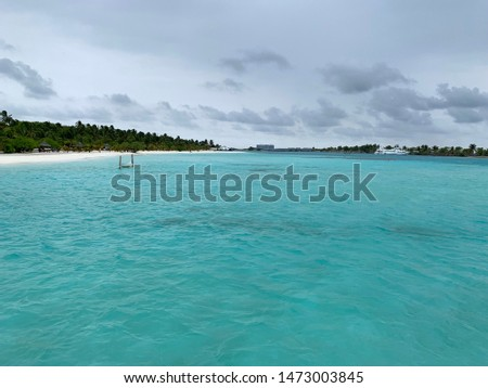 Romantic Maldives island beach view with sea green water and trees #1473003845