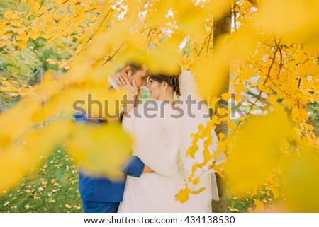 Romantic moment of newly married couple under autumn tree with yellow leaves - Shutterstock ID 434138530