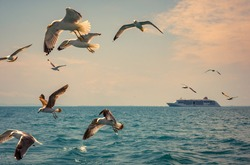 Romantic sea voyage on cruise liner - seascape with flying seagulls and passenger ship on horizon.