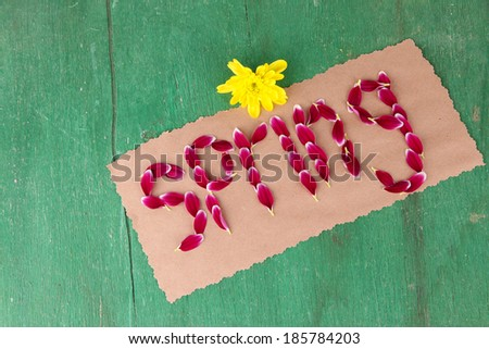 Romantic spring letters made of pink petals, on wooden background