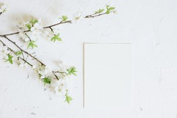 Romantic spring mock up with white card and blooming branches