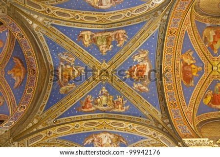 Rome - roof from Santa Maria sopra Minerva church