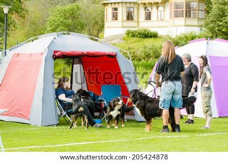 RONNEBY, SWEDEN - JULY 05, 2014: Blekinge Kennelklubb international dog show. Dogs and people meeting outside show tent.