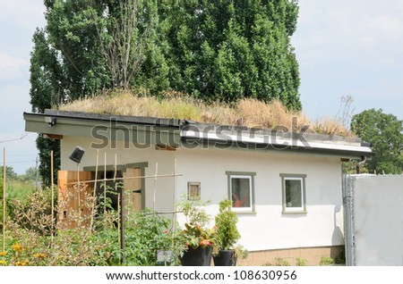 Roof Garden: Grass Covering Roof Of Small Building