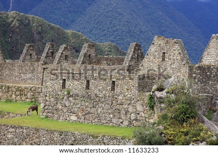 Roof-less buildings among the ruins at Machu Picchu, Peru