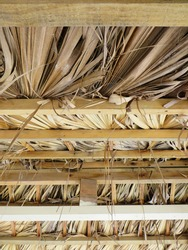 Roof made of dry palm branches, bamboo, wood. Construction and tropical roof with reeds from the French Antilles. Ecofriendly architecture concept.