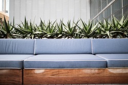 Roof top bar with blue cushions on bench seat with row of cactus plants