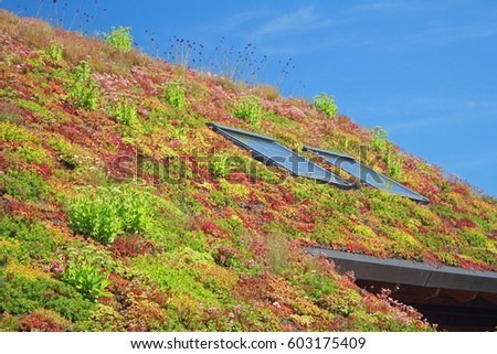 roof with sedum #603175409