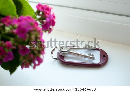 Room key on a windowsill next to a potted plant