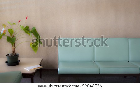 Room with chairs and potted plant - soft