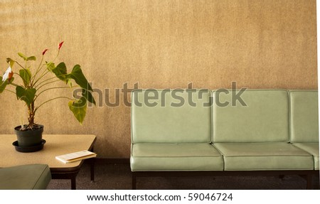 Room with chairs, potted plant and a book