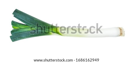 root of fresh leek with greens cutout on white background Сток-фото ©