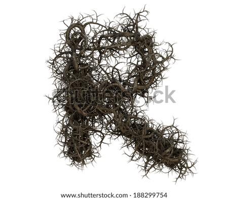 Roots Tree Alphabet Photo stock ©
