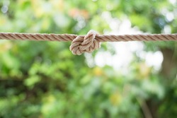 Rope knot green background.