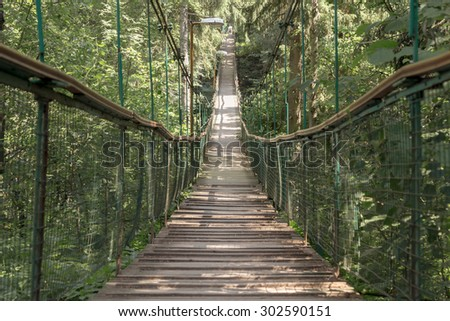 Rope walkway through the treetops in a rain forest. #302590151