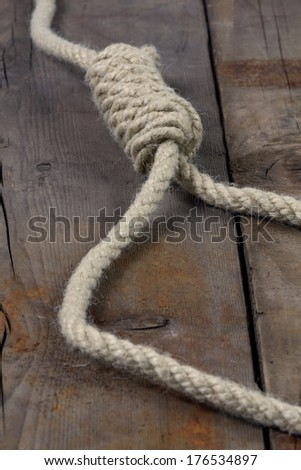 Rope with hangman's noose on wooden background