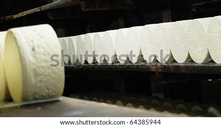 roquefort cheese in refining